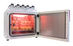Biogas Batch Fermentation System